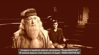 Harry Potter КОРОЛИ НОЧНОЙ ВЕРОНЫ