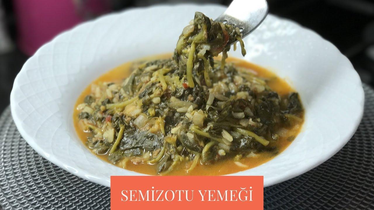 Semizotu Yemeği Tarifi Videosu