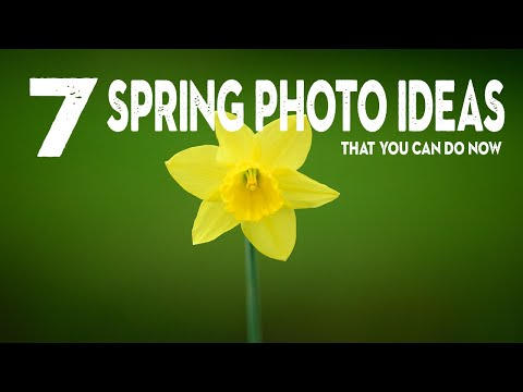 7 PHOTO IDEAS to IMPROVE your SPRING photography