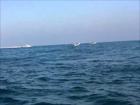 Israeli navy harasses Palestinian fishermen, international observers off Gaza coast