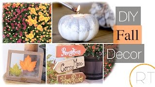 Fall Decor & DIY Around The House