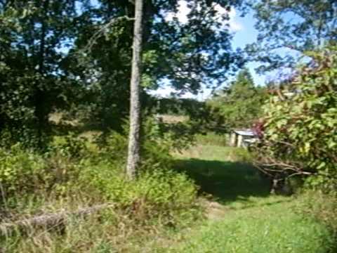 Hobby Farm Or Weekend Getaway In Rural Dent County MO