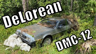 DeLorean lost in TIME, left for rot....