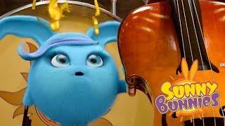 Des dessins animés pour les enfants | Sunny Bunnies -  Folie de la musique | Animation