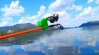 Монстры клюют у самого берега Такой рыбалки я ещё не видел Ловля карпа и линя на закидушки