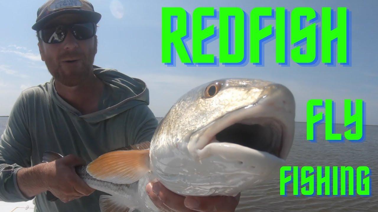 REDFISH in the MARSH (fly fishing Louisiana)