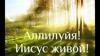 Христианская песня - Аллилуйя! Иисус живой! (Когда Господь смотрел на землю)