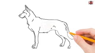 How to Draw a German Shepherd Step by Step Easy for Beginners – Simple Dog Drawing Tutorial