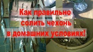 Как солить рыбу в домашних условиях Как правильно солить чехонь!(Как солить рыбу в домашних условиях, Как правильно солить чехонь! Ловим чехонь , как показано в начале видео,..., 2015-09-01T01:08:09.000Z)
