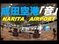 【環境音】夕方の成田空港 国際線出発アナウンス・チャイム きれいな中国北京語普通話・英語・日本語 BGM Narita Airport in JAPAN announcements
