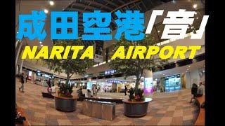 【環境音】夕方の成田空港 国際線出発アナウンス・チャイム きれいな中国北京語普通話・英語・日本語 BGM Narita Airport in JAPAN announcements thumbnail