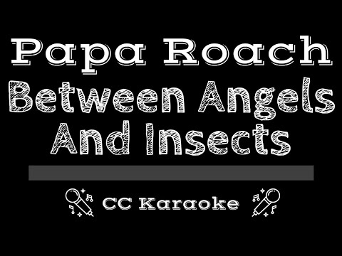 Papa Roach • Between Angels And Insects (CC) [Karaoke Instrumental Lyrics]