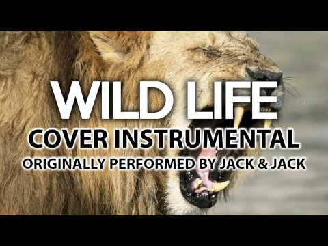 Wild Life (Cover Instrumental) [In the Style of Jack & Jack]
