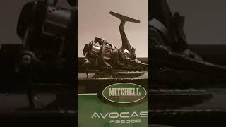 Mitchell Avocast FS 2000 Baitrunner review