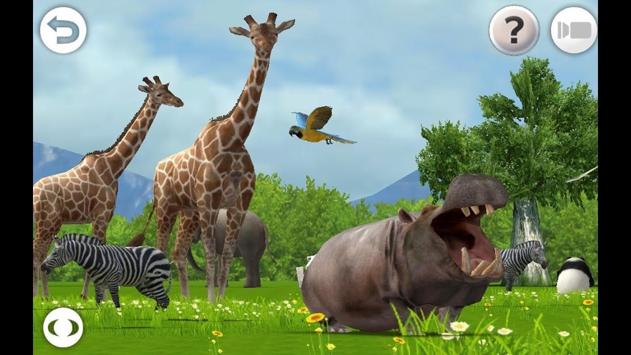 animals 3d games panda sounds learn