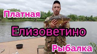 Рыбалка в Елизоветино Платник Подмосковья