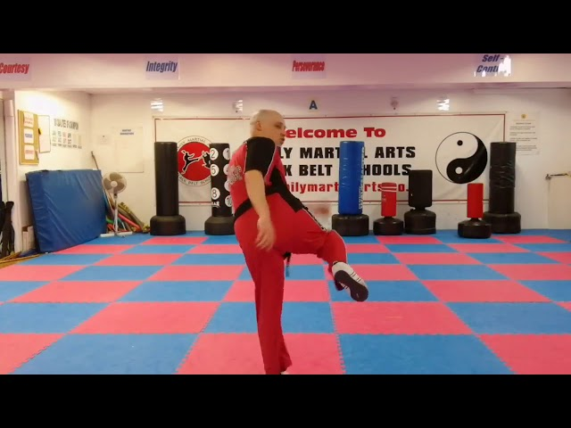 Family Martial Arts | Mr T with the third of the advanced kick combinations