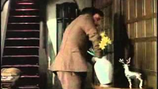 The Peter Sellers Pink Panther Films of the 1970s.mp4
