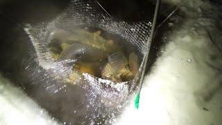 Холодные дырки, не отпускали нас домой всю ночь.Рыбалка на паук подъёмник.Наловили огромных сазанов.