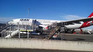 Qantas Complimentary Shuttle Bus in Sydney (T1 to T3)