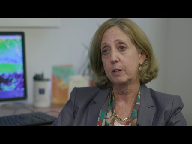 Mount Sinai Spotlight: Ozone and Air Pollution