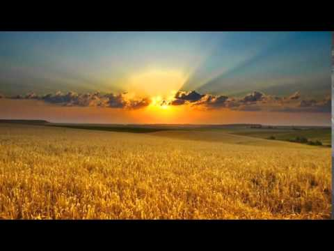 Sweet Memories * *  * Andy Williams