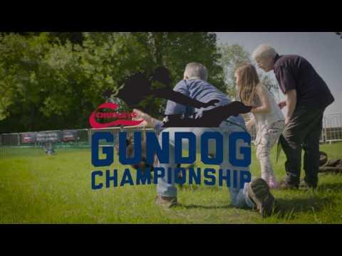 Highclere 2016 | Chudley's Gundog Championship Round Up