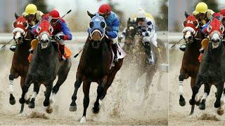Horse Racing 2018, 🏇 Racing