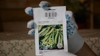 видео Купить саженцы с доставкой в Черкассы