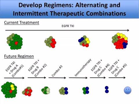 Targeting Cancer Pathways: Tumor Resistance