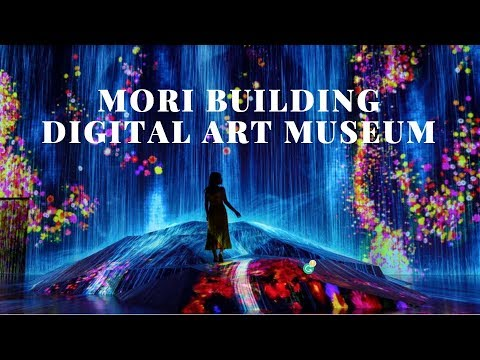 (VLOG) MORI BUILDING DIGITAL ART MUSEUM - TEAMLAB BORDERLESS