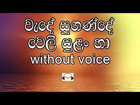 Wede Sugande Karaoke (without voice) වැදේ සුගණ්දේ වෙලී සුළං හා