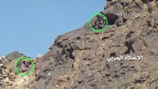 Yemeni joint forces resized Alslta hill in Nihm 11.2.2018