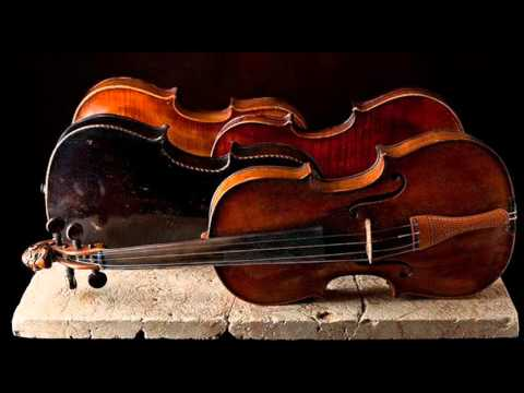 J. Pachelbel: Musicalische Ergoetzung - Partita I for 2 violins & b.c. in F major / L'Estravagante