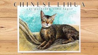 Acrylic Pet Portrait Painting Process | Chinese Li Hua Cat | 田園貓 壓克力繪畫