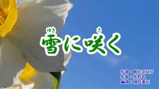 『雪に咲く』みずき舞 カラオケ 2019年(令和元年)5月15日発売