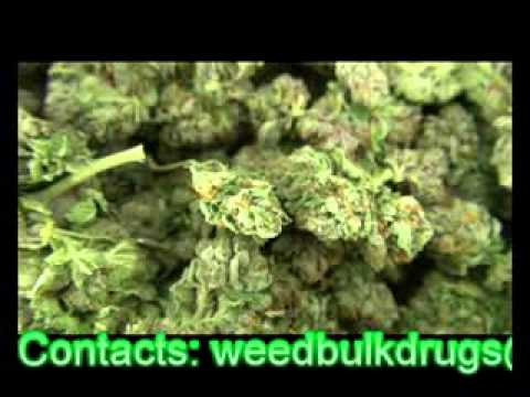 MARIJUANA FROM WEEDS AND BULK DRUGS LTD
