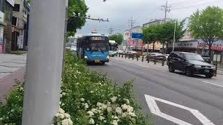 부산 금정구 롯데 마트 사라진 후 부산버스들(4)