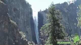 Yosemite National Park in Californië | NatureScanner