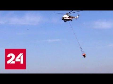 Окрестности Мурманска продолжают гореть - Россия 24
