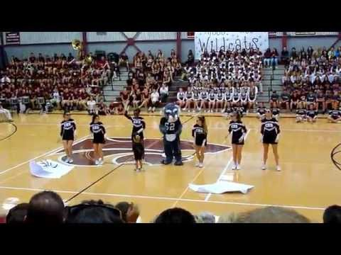Central Cheerleaders dance with Willy the Wildcat