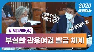 """201007 국정감사 김홍걸의원 """"외교부 부실…"""