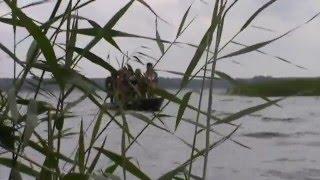 Амазонки и тарзаны 1й фильм СПиЗа 30 июля 2011