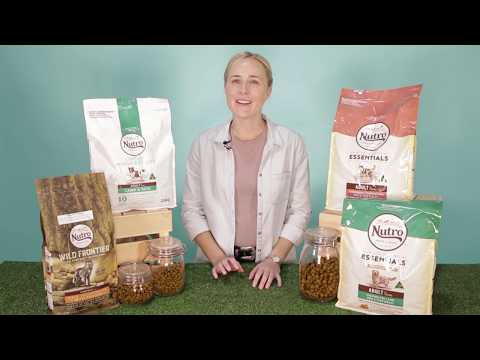Nutro Dog Food - Discover More With Pet Circle