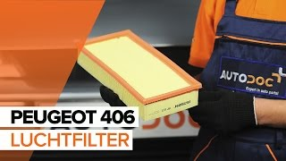 Montage Luchtfilter PEUGEOT 406 (8B): gratis video