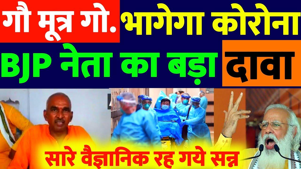 गौ मूत्र और घी से भागेगा कोरोना | BJP नेता का सनसनीखेज दावा | BJP नेता ने निकाली कोरोना का सटीक इलाज