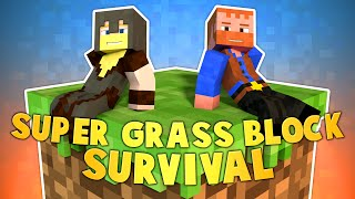 SUPER GRASS BLOCK SURVIVAL (Ep.2) ★ Minecraft: Dumb & Dumber