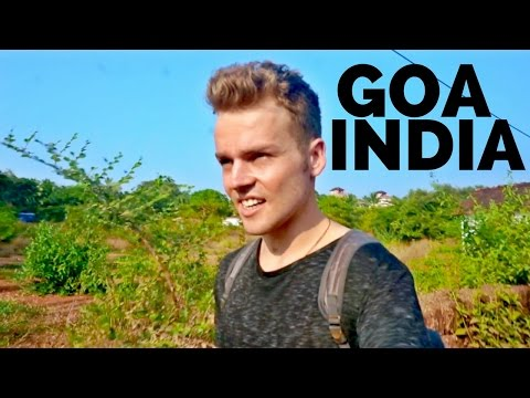 🌴GOA IS CRAZY | India Travel🌴