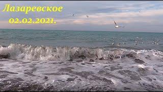 16 5 тепла 02 02 2021 Утро в Лазаревском ЛАЗАРЕВСКОЕ СЕГОДНЯ СОЧИ