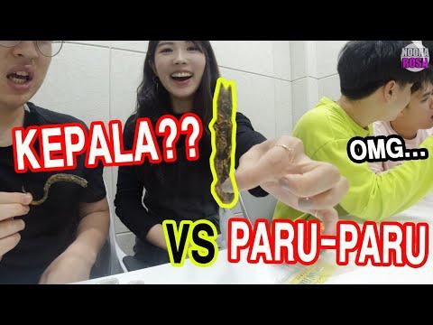 kripik-khas-indonesia-yang-tidak-ada-di-korea-i-한국에서-볼-수-없는-특별한-인도네시아-과자?